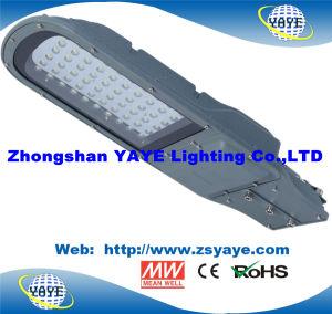 Yaye 18 Hot Sell 60W LED Street Light /60W LED Road Lamp /60W LED Street Lighting with Ce/RoHS pictures & photos