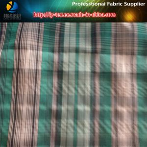 Polyester&Nylon Yarn Dyed Check Crinkle Fabric pictures & photos