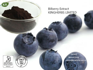 Natural Bilberry Extract Anthocyanins 10%-35% by HPLC pictures & photos