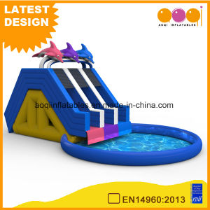 Whales Water Park Inflatable Water Pool with Slide (AQ01796) pictures & photos