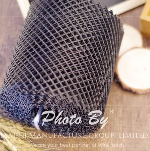 HDPE Diamond Plastic Fishing Roll Net Mesh pictures & photos