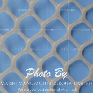 Extruded Polypropylene Net Mesh pictures & photos