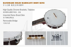 China Aiersi Brand Banjolele for Sale OEM ODM Wholesale Price pictures & photos