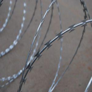 China Premium Galvanized Steel Bto 22 Razor Barbed Wire pictures & photos
