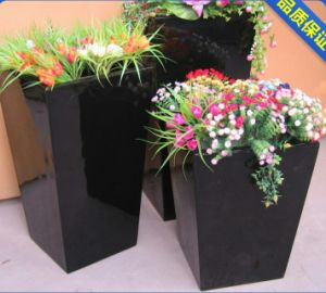 Stainless Steel Flower Boxes for Garden, Hotel and Apartment pictures & photos