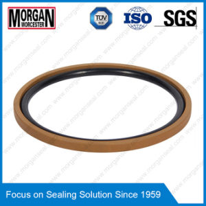 Omk-Mr/OE Series NBR/FKM+PTFE Hydraulic Piston Seal Ring pictures & photos