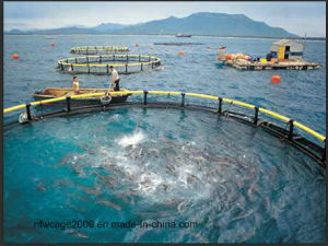 HDPE Floating Aquaculture Fishing Cage pictures & photos