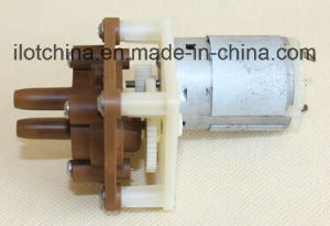 Ilot High Quality Gear Pump for Agricultural or Garden Sprayer pictures & photos
