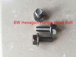 Hexagon Flange Head Bolt pictures & photos