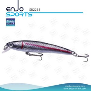 Plastic Artificial Bait Top Water Fishing Lure Fishing Tackle with Vmc Treble Hooks pictures & photos