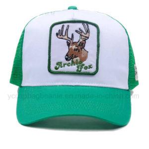 Promotional Cheap Mesh Cap, Truckert Hat pictures & photos