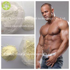 Anti Estrogen Steroid Raw Powder Nolvadex for Bodybuilding pictures & photos