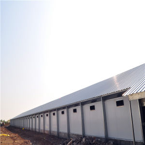 Prefab Shed with Automatic Equipment for Poulty Husbandary pictures & photos
