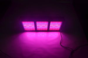 High Power 1000W Grow Panel LED Full Spectrum for Plants pictures & photos