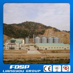 Corn Steel Silo/Grain Storage Silo Manufacturer pictures & photos