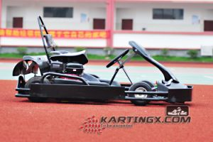 New Karting 200cc Racing 4 Stroke Go Kart with Upgrade Beatle Plastic Set pictures & photos