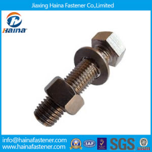 Standard Fastener Hex Bolt & Nut and Washer pictures & photos
