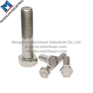 DIN933 DIN931 Stainless Steel Hex Bolt pictures & photos