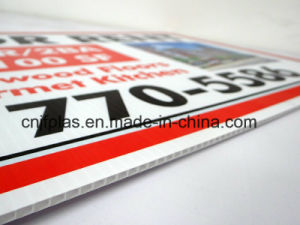 PP Cartonplast/Corrugated Sheet for Digital Printing/Package pictures & photos