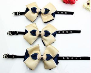 High-Grade Pearl Blue Knot Drill Flocking Pet Collar pictures & photos