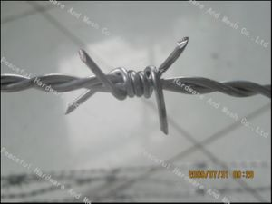 Hot Sale 12X12 Barbed Iron Wire pictures & photos