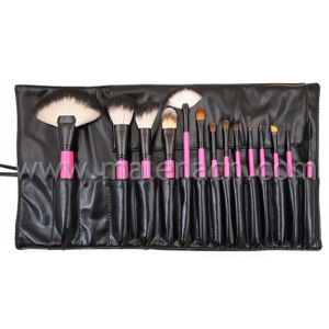 14PCS Professional Makeup Brush Set with Wooden Handle pictures & photos