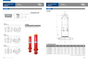 Telescopic Hydraulic Cylinder Manufacturer in China pictures & photos