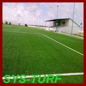 Popular Wide Blade Artificial Grass for Sporting Surface pictures & photos