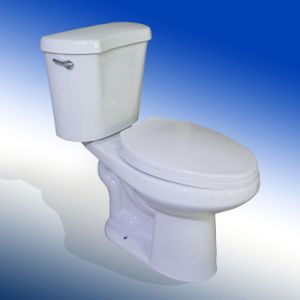 High Quality Elongated and Tall Ceramic Two Piece Sanitary Ware