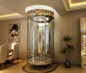 320kg~400kg Home Lift Elevators, Luxury Small Residential Lift pictures & photos