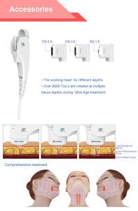 Anti-Wrinkle Hifu Weight Loss Beauty Machine with ODM/OEM/Ce (Fu4.5-2s) pictures & photos