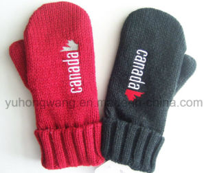 Warm Knitting Acrylic Gloves & Mittens with Embroidery