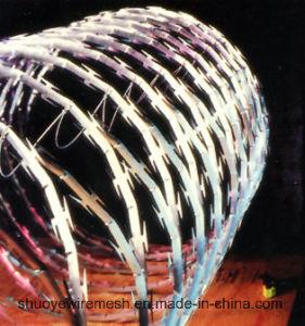 Galvanized Razor Barbed Wire Mesh Fencing pictures & photos