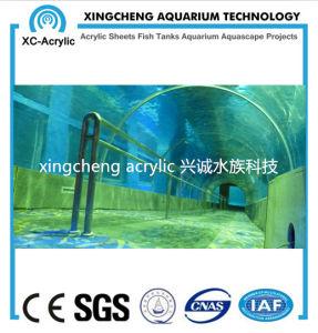 Customized Acrylic Tunnel Aquarium pictures & photos