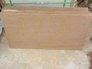 Hot Selling China A Grade Yellow Wooden Sandstone pictures & photos