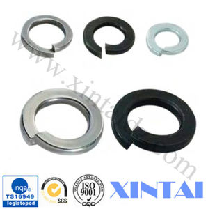 Zinc Plated Steel Flat Washer Spring Washer pictures & photos