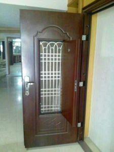 Door in Door Steel Door pictures & photos