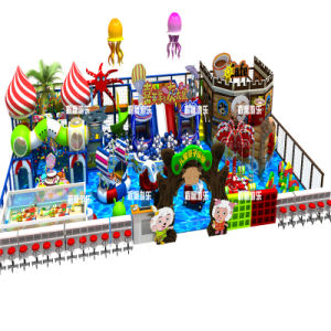 Fascinating and Design Indoor Playground pictures & photos