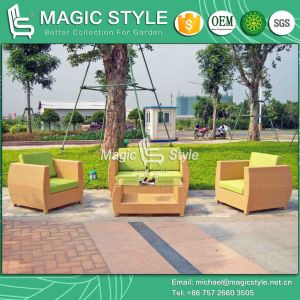 Classical Sofa Wicker Sofa Rattan Sofa Garden Furniture Patio Furniture Outdoor Furniture Lounge Sofa pictures & photos