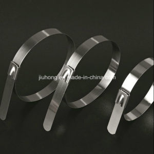 304 and 316 Stainless Steel Cable Ties with Self Lock pictures & photos