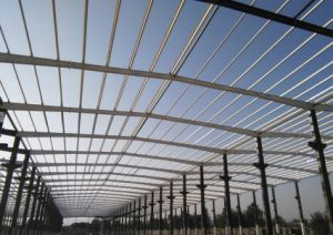 Wide Span Steel Structure/Frame with C Section Purlin pictures & photos