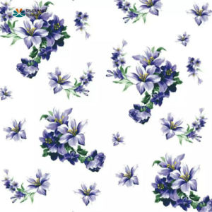 Decoration Material Quality Flower Pattern PPGI pictures & photos
