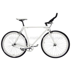 High Quality Single Speed Fashion Racing Bike/Fix Gear Bike pictures & photos