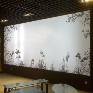 Interior Decoration Waterproof LED Light Box pictures & photos