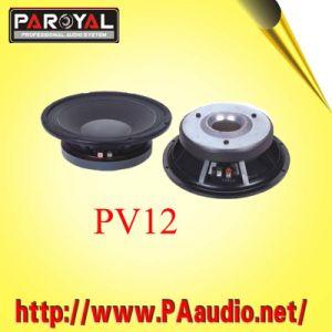 Speaker PV12