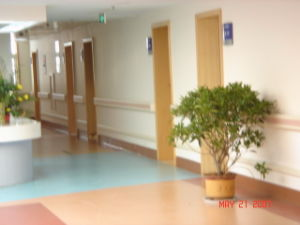 Hospital Interior Wall Protection Wall Bumper Rails pictures & photos