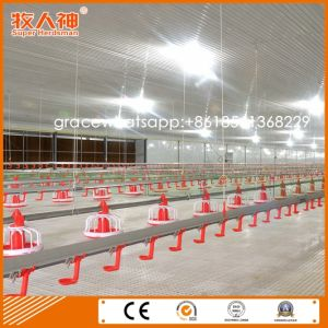 Automatic Broiler Poultry Feeders and Drinkers for Modern Chicken Farm From Factory pictures & photos