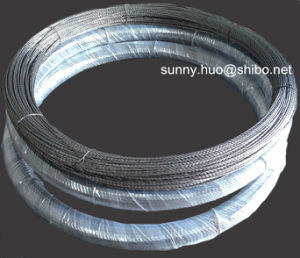 Super Quality Tungsten Wire, Tungsten Screw, Tungsten Filament pictures & photos