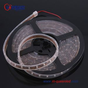 LED Rope Light (MQ-ST3528W30-12V)