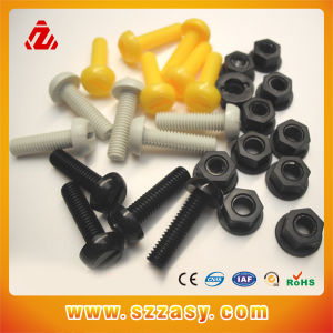 Plastic Nuts and Bolts pictures & photos